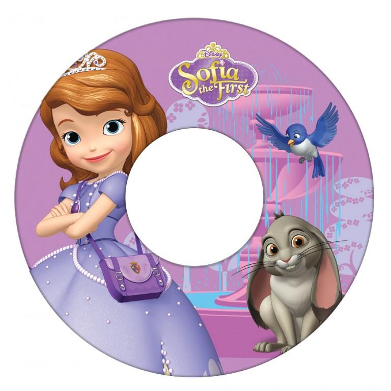 Princess Disney Invitations for good invitation design
